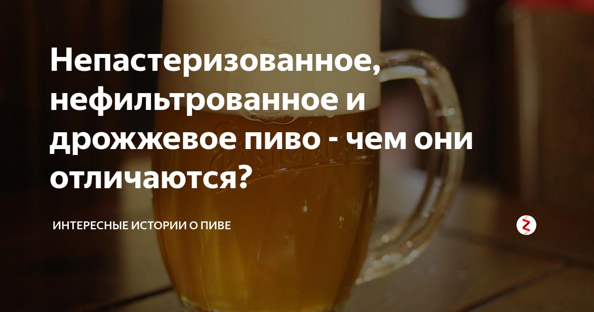 Чем отличается непастеризованное пиво от пастеризованного?
