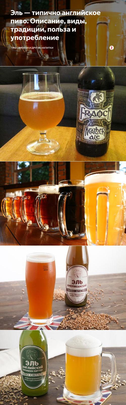Чем отличается эль от пива + описание 11 сортов эля