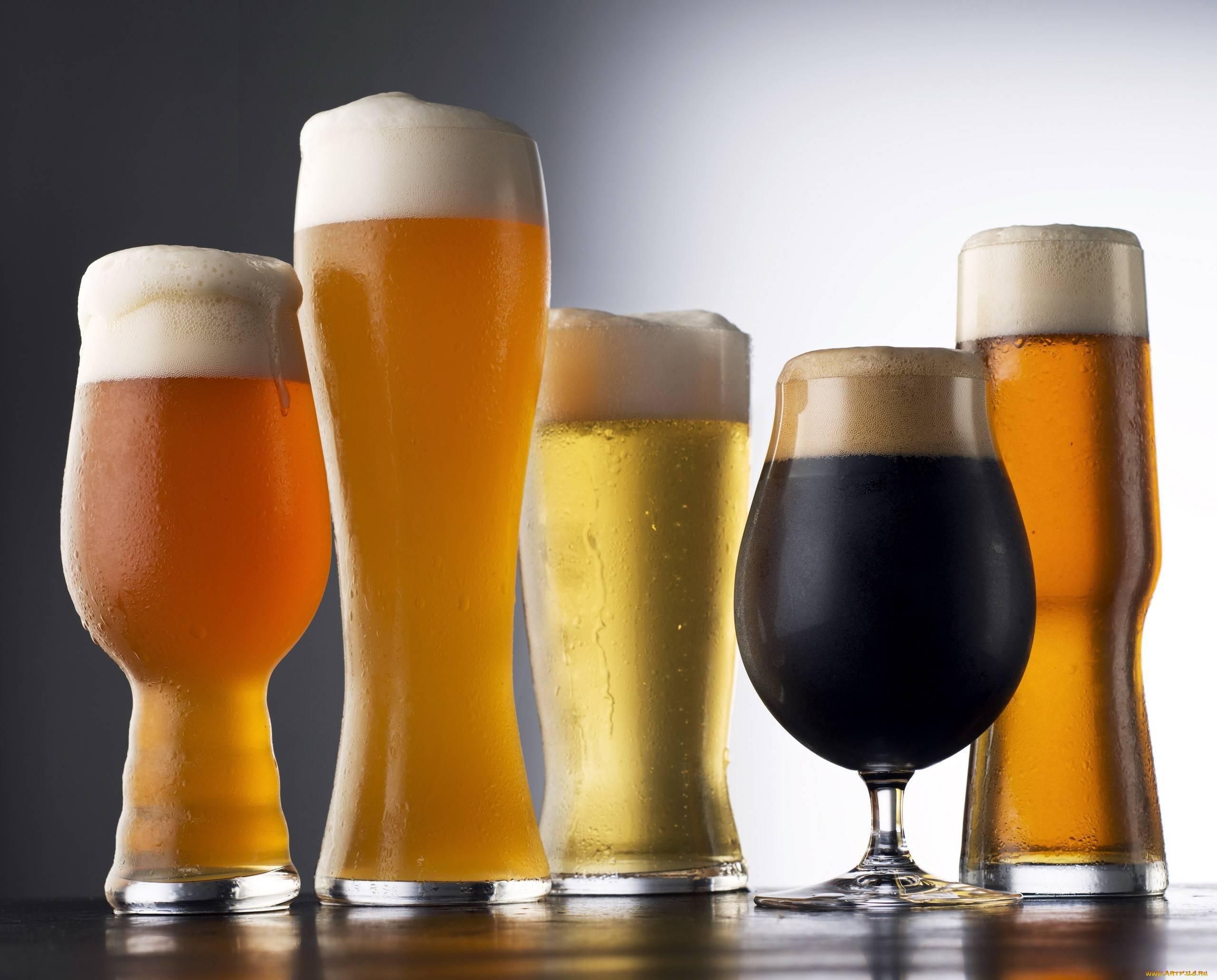 Чем отличается пиво от пивного напитка: состав и лучшие бренды