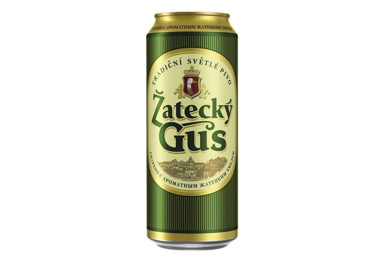 Пиво «жатецкий гусь»: верность традициям