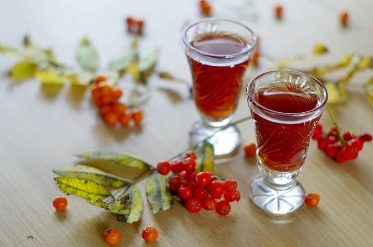 Рябина черноплодная и красноплодная на коньяке: рецепты приготовления настойки в домашних условиях