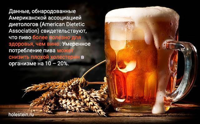 Повышает ли холестерин пиво - лечение диабета