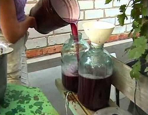 Простые пошаговые рецепты как сделать вино из винограда молдова в домашних условиях