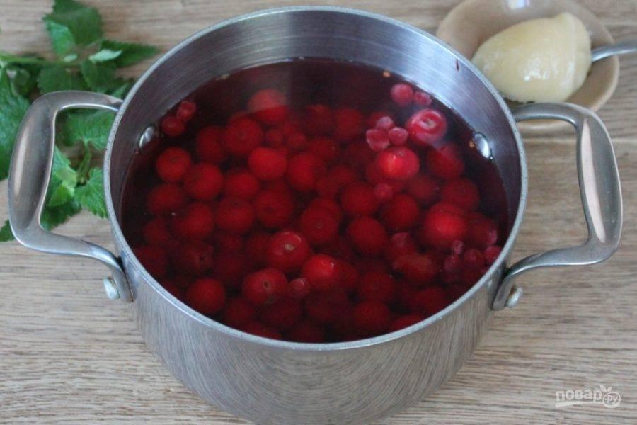 Как приготовить настойку из лимонника китайского на водке. как применять готовую настойку лимонника
