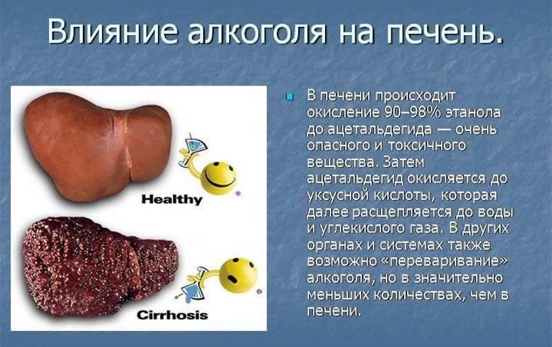 Как защитить печень при приеме алкоголя, перед застольем. препараты для защиты печени от алкоголя.