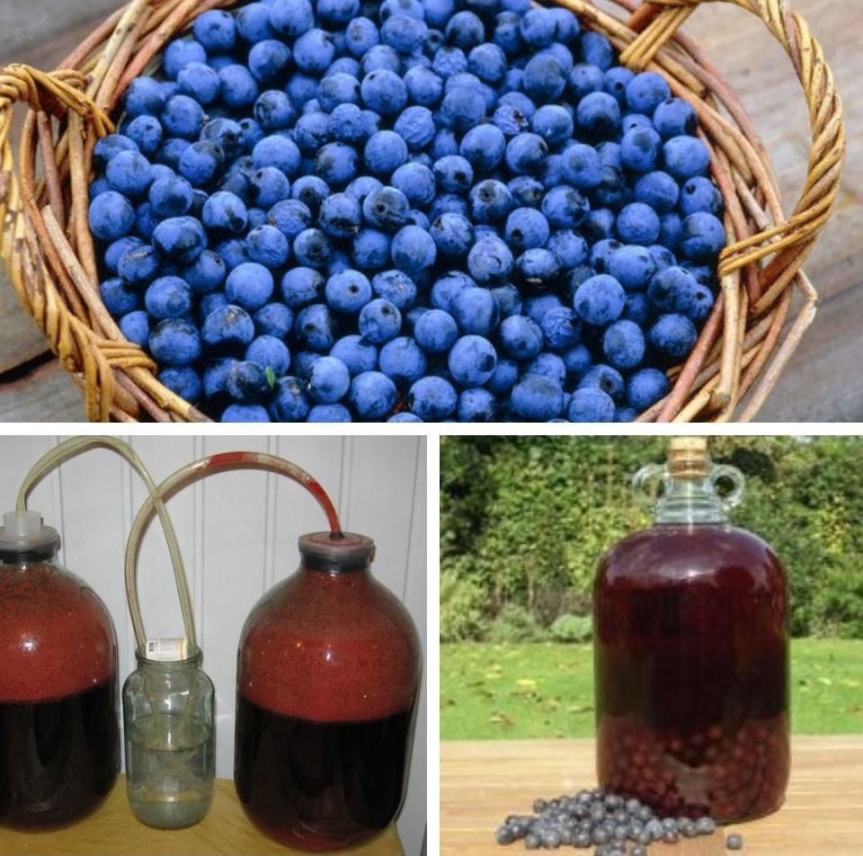 Вино из компота в домашних условиях: простые рецепты