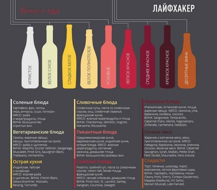 Что вреднее для здоровья пиво или шампанское | польза и вред