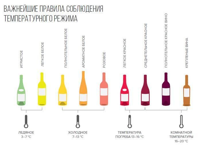 Правила хранения вина в бутылках, а также срок годности напитка в разных тарах