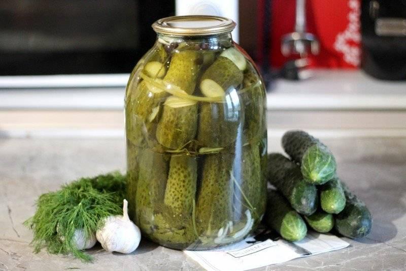 Настойки на водке в домашних условиях – самые лучшие рецепты | дачная кухня (огород.ru)