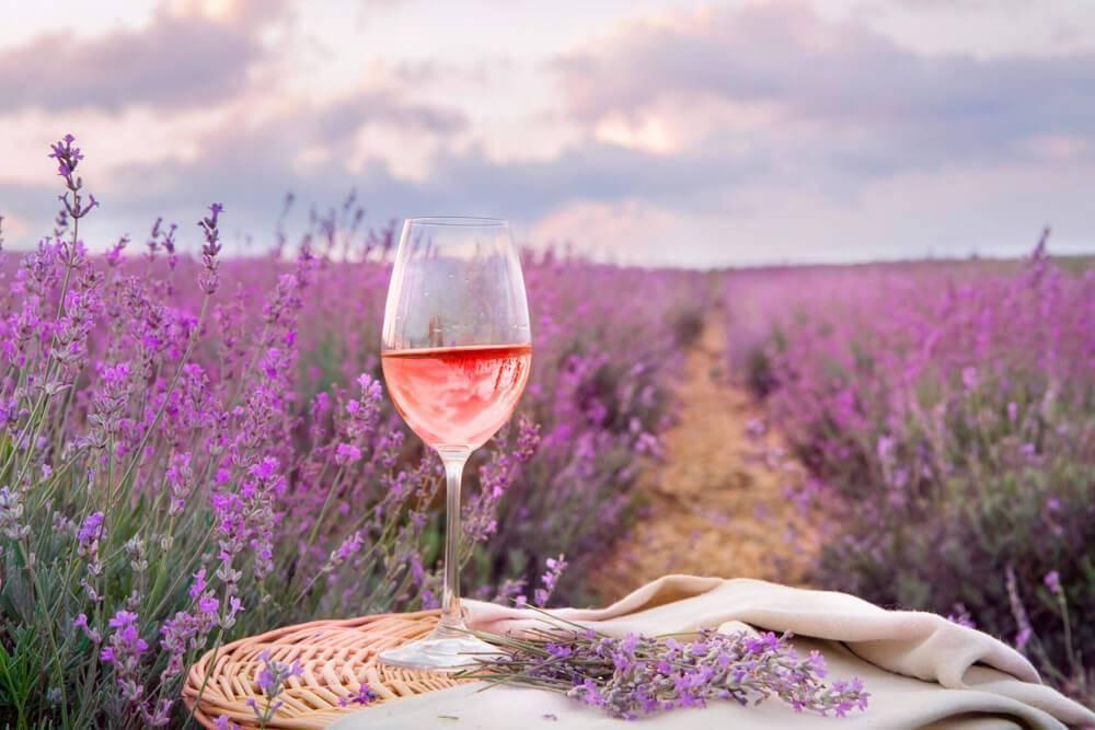 Винодельни прованса: лучшие красные, белые и розовые вина