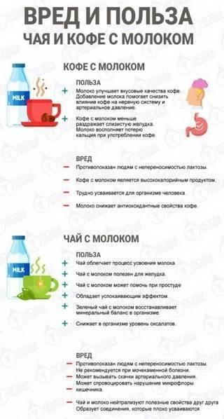 Медовуха: польза и вред напитка для организма