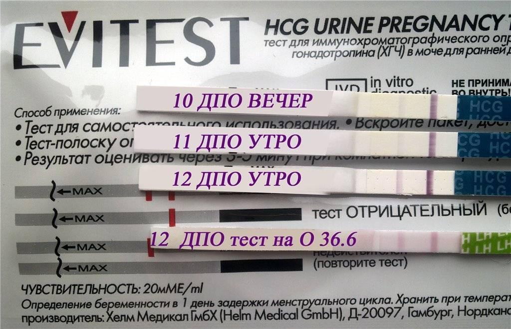 Можно ли делать тест на беременность после алкоголя? тест на беременность после алкоголя