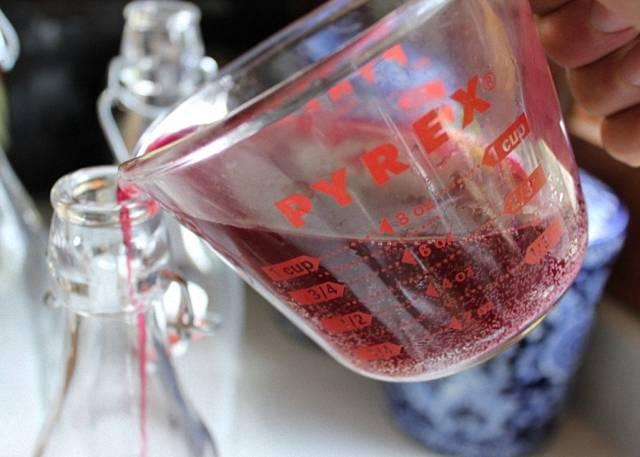 Рецепты настоек шиповника на водке, спирте и самогоне: способ приготовления и 5 простых рецептов, список необходимых компонентов и лечебные свойства