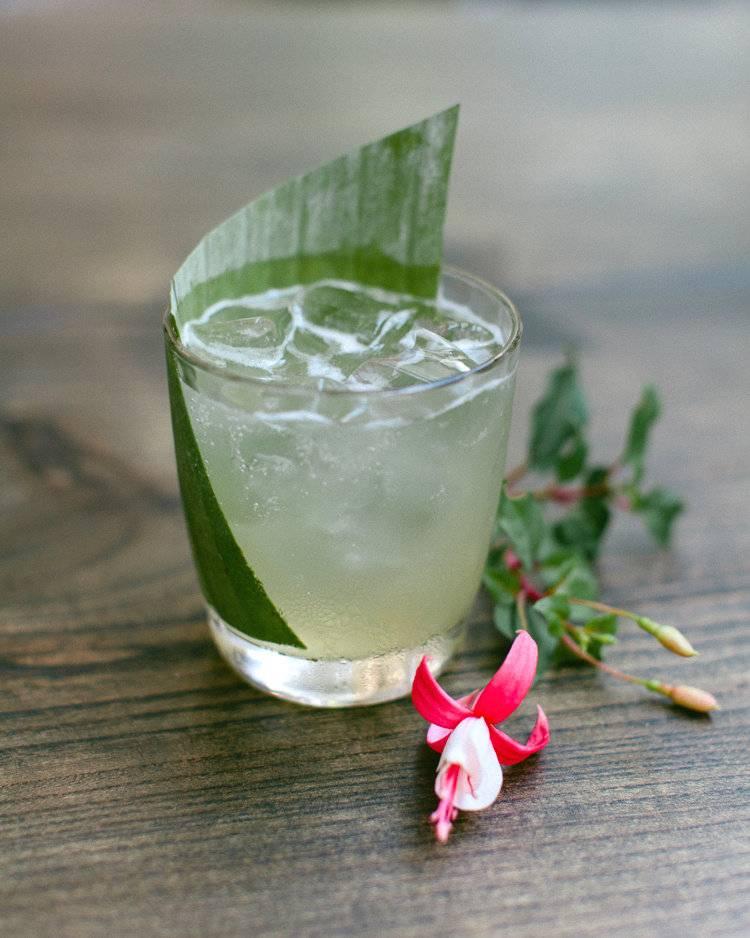 Коктейль апероль шприц - состав и чем заменить просекко, как правильно пить и подавать напиток гостям