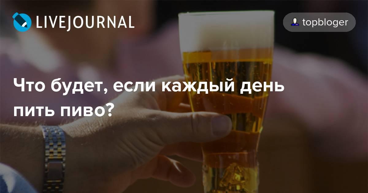 Можно ли пить пиво каждый день, что будет с организмом?