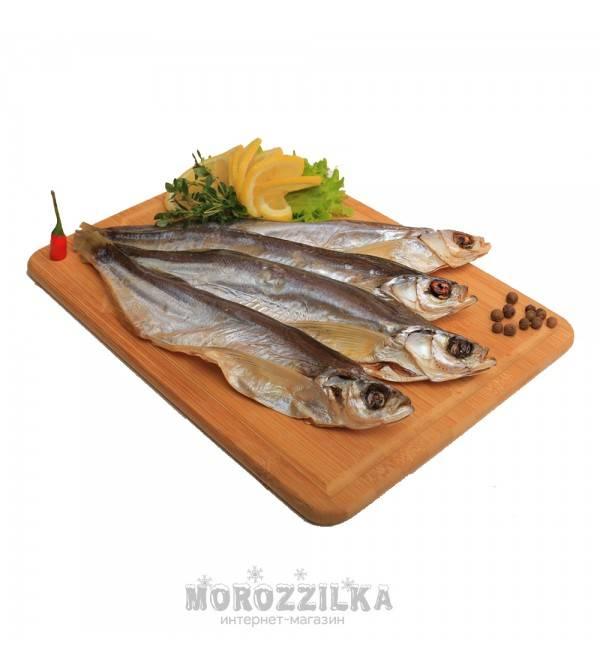 Рыба к пиву: названия вкусной, выбор лучшего способа приготовления