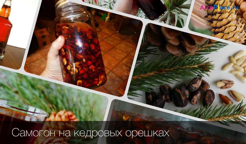 Рецепт приготовления настойки на кедровых орешках