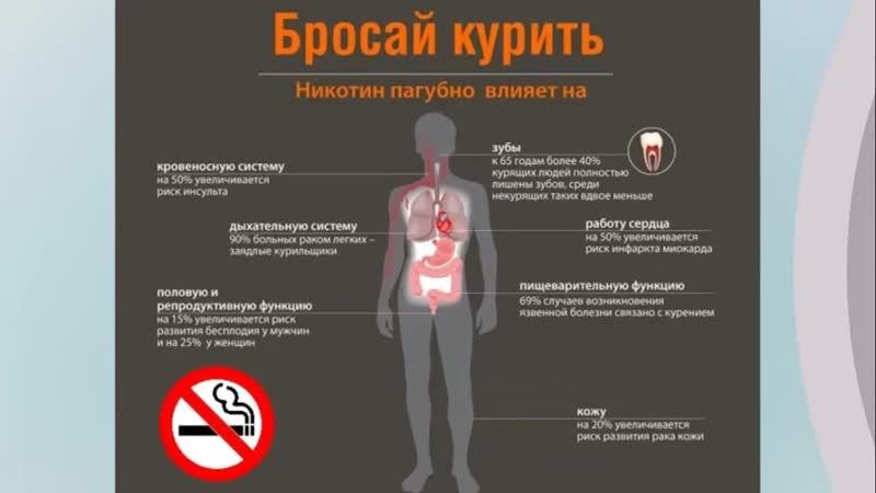 11 шагов к жизни без сигарет – как избавиться от сигарет и других вредных и плохих привычек | 1000 секретов силы | яндекс дзен