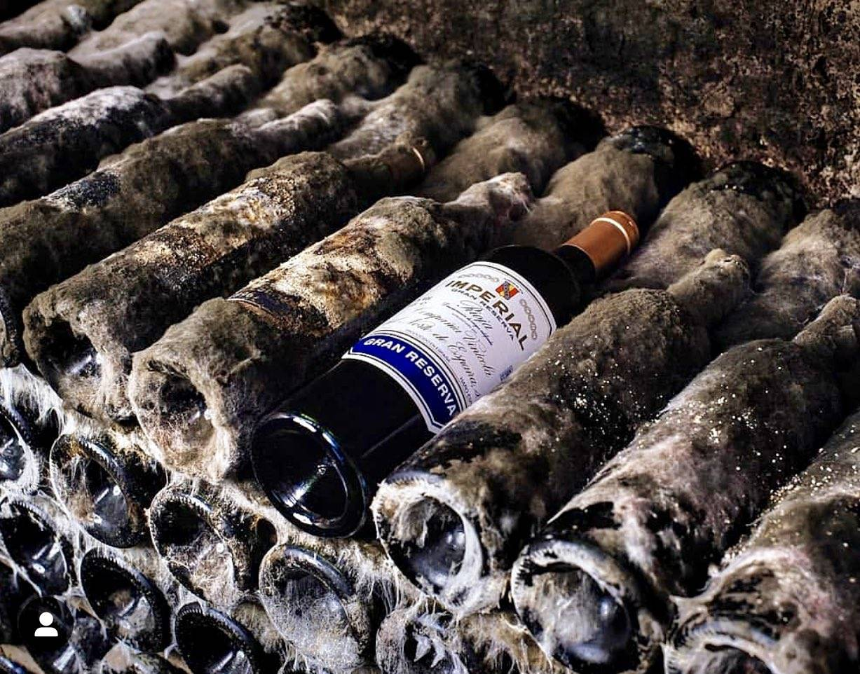 Условия хранения красного вина дома