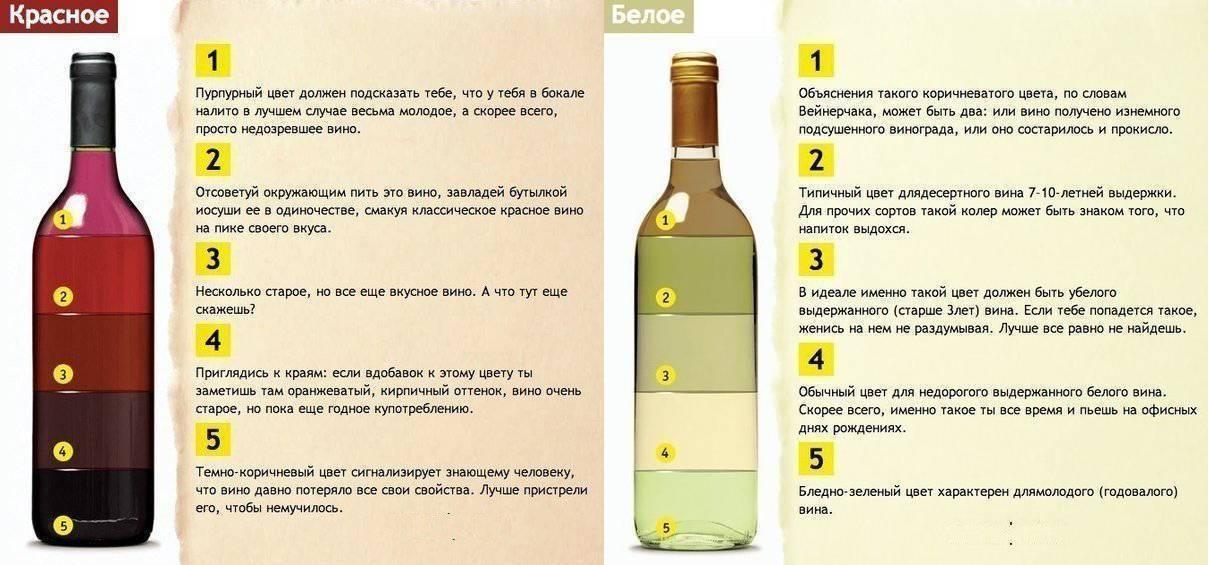 Сложности выбора: какое вино лучше – сухое или полусладкое