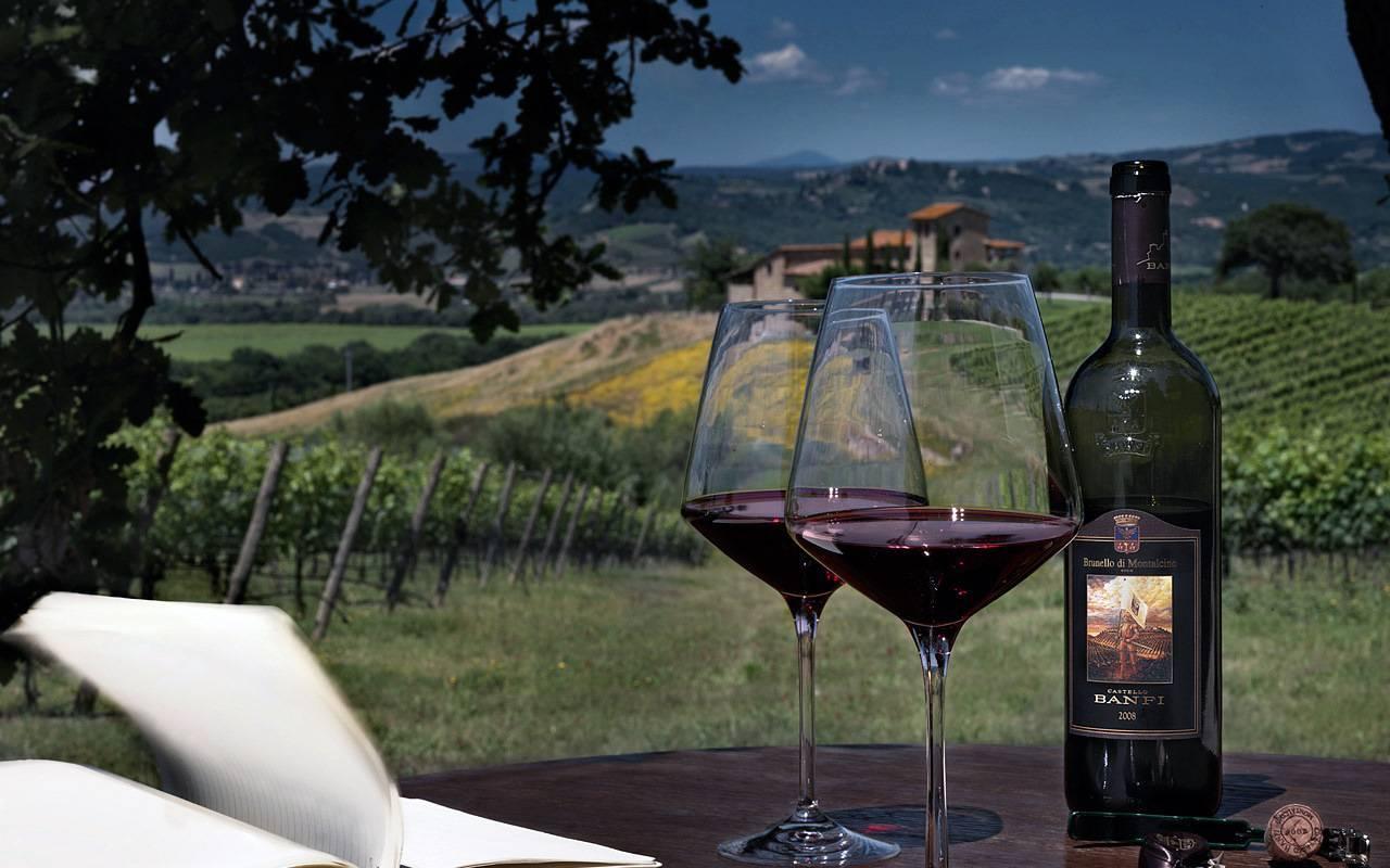 Тоскана — регион виноделия италии: вина тосканы