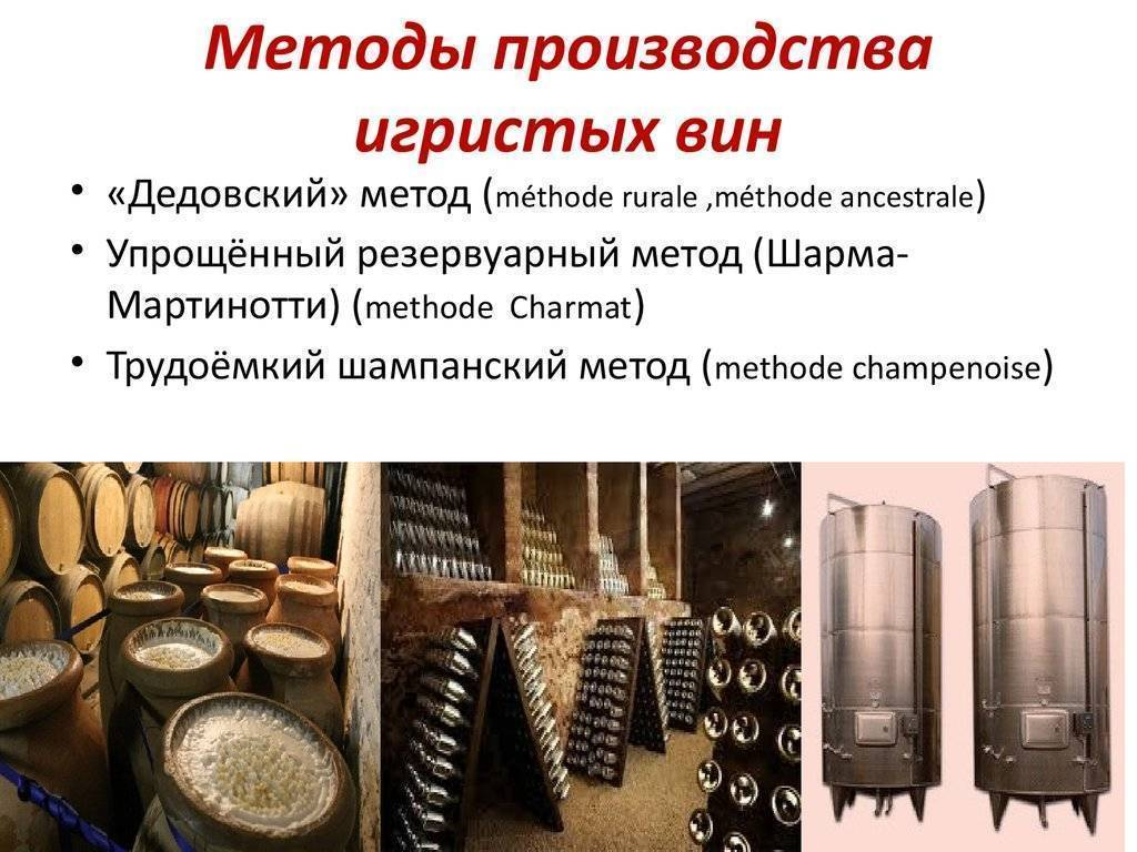 Особенности домашнего виноделия и технологии самостоятельного приготовлении вина