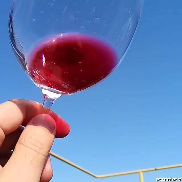 Энотерапия или как правильно лечиться вином
