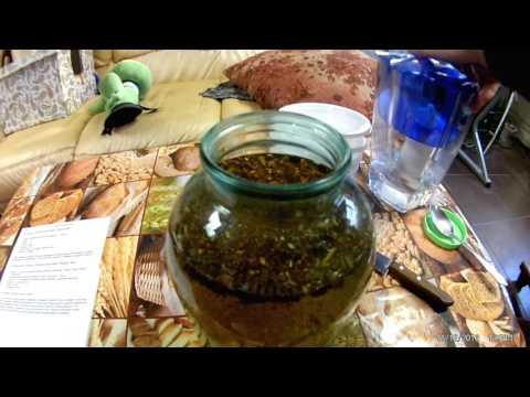 Трава зубровка полезные свойства, противопоказания, фото, рецепты