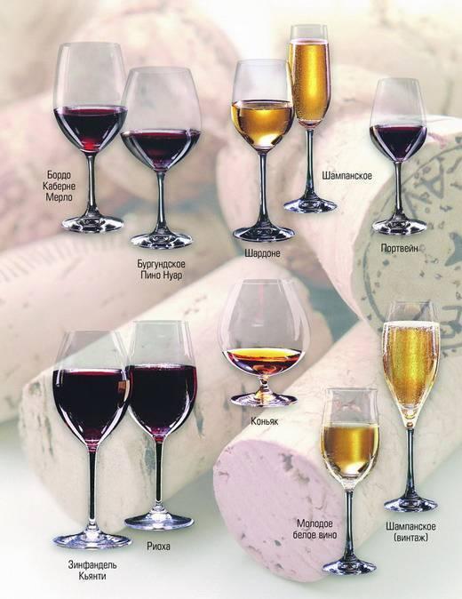 """Какое вино купить в испании: полезные советы, фото и цены. вина испании – 2020 отзывы туристов и форум """"ездили-знаем!"""""""