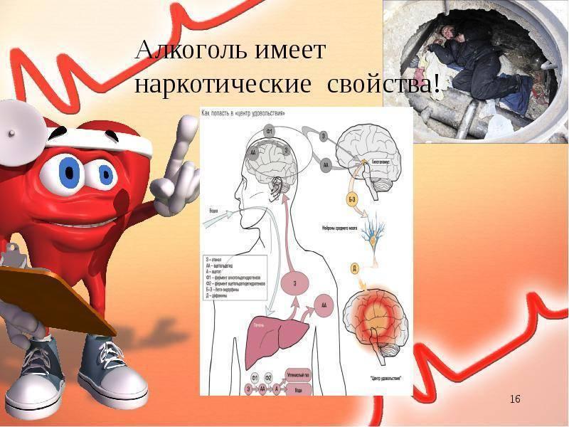 Воздействие алкоголя на иммунную систему