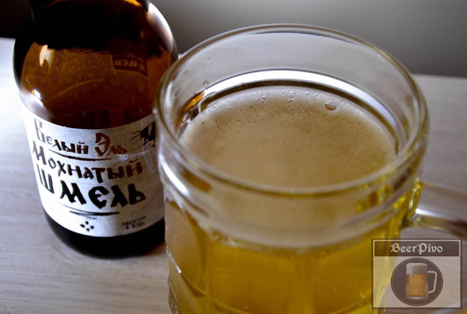 «мохнатый шмель» — пиво для гурманов по доступной цене