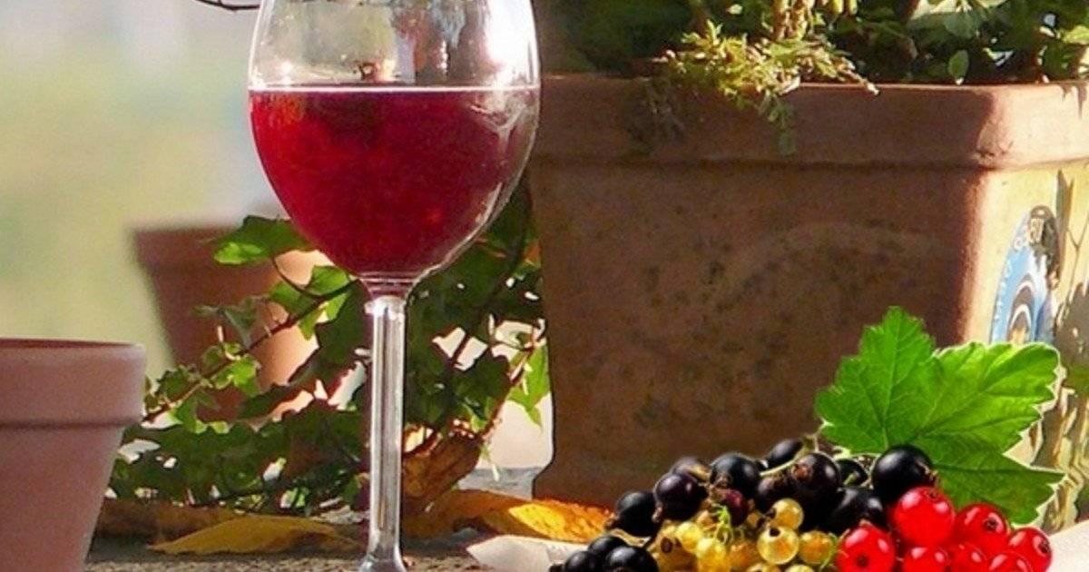 Изумительное вино из абрикосов в домашних условиях