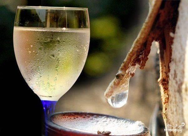 Как сделать вино из березового сока: рецепты домашнего напитка без дрожжей и кипячения. как изготовить и поставить – пошаговое описание