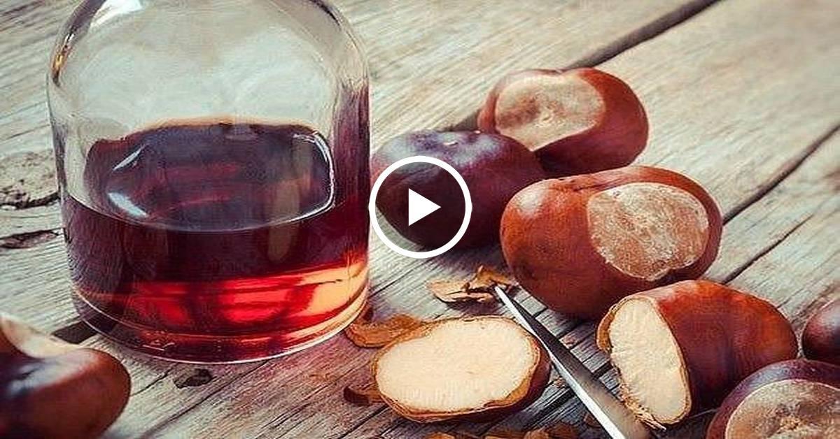 Польза для суставов и противопоказания использования рецептов настоек на водке из каштана