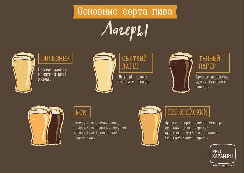 Чем отличается пиво от пивного напитка коротко и ясно