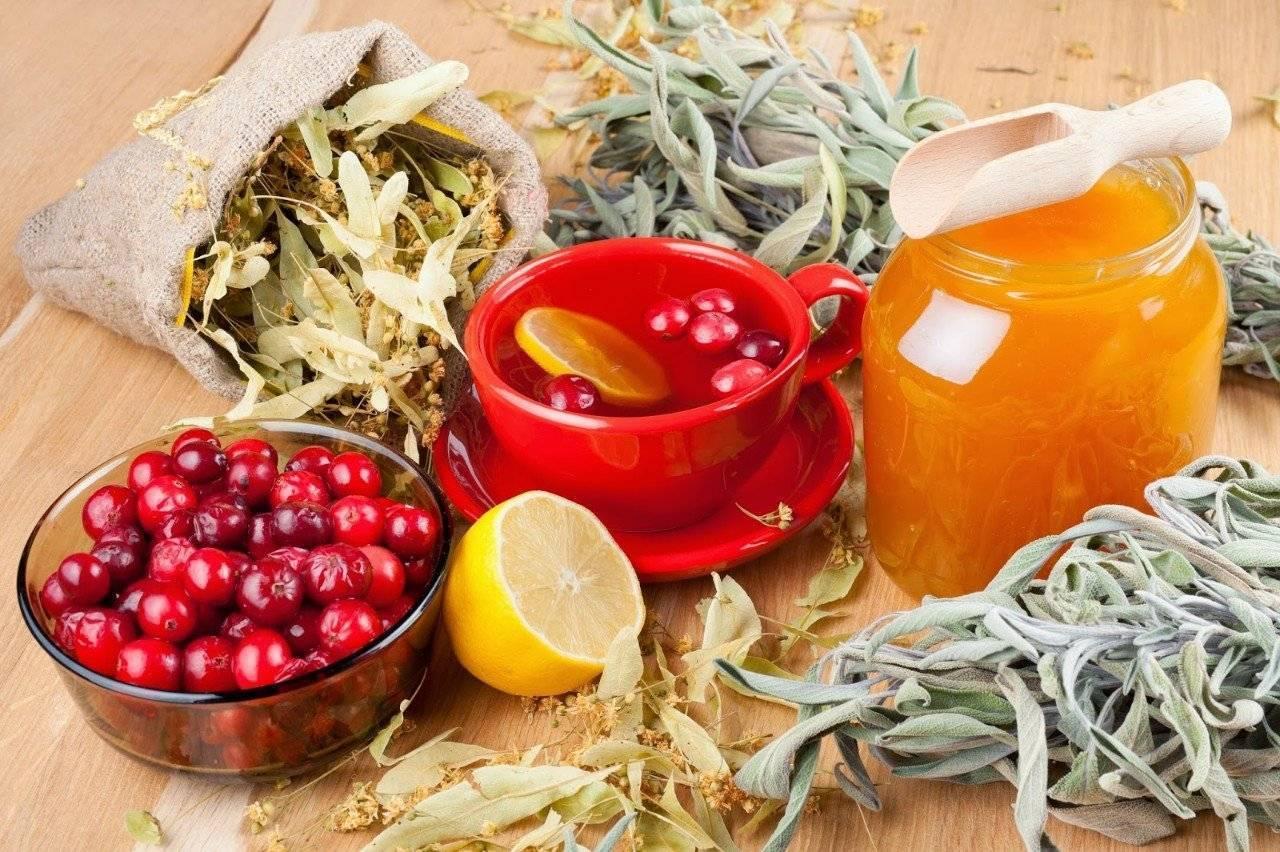 Лечение цирроза печени народными средствами, как лечить лекарственными травами