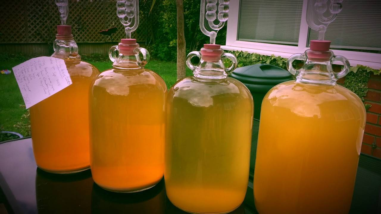 Как сделать вино малиновое вино с крыжовником дома