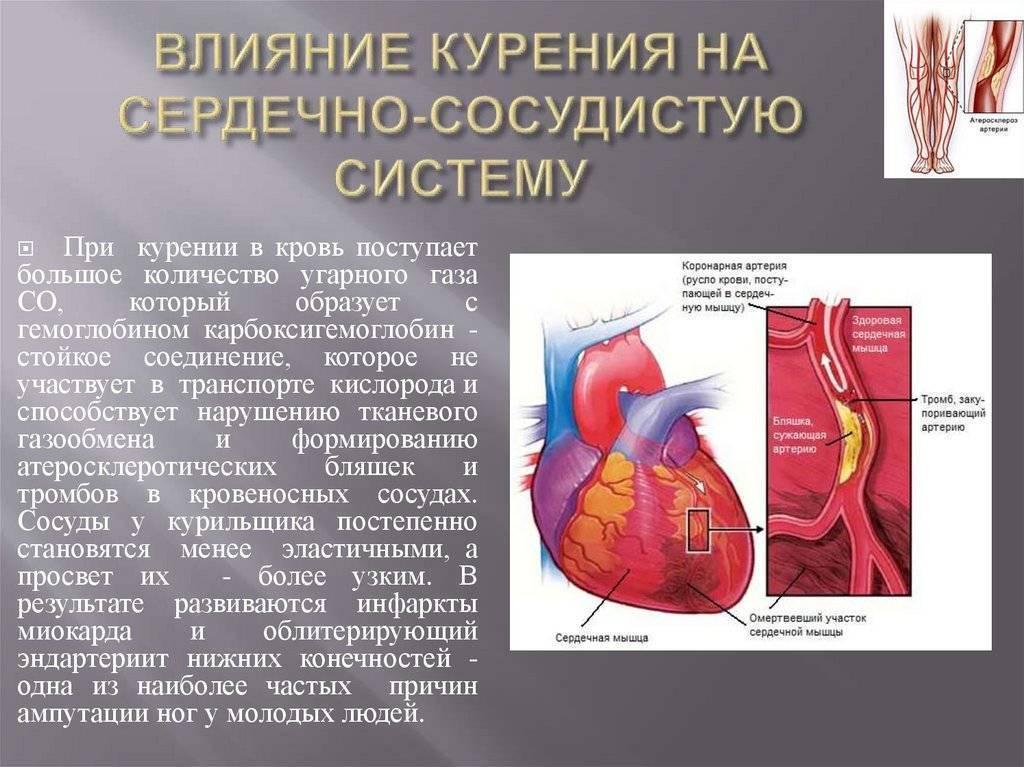 Никотин сужает или расширяет сосуды и как курение сказывается на их состоянии