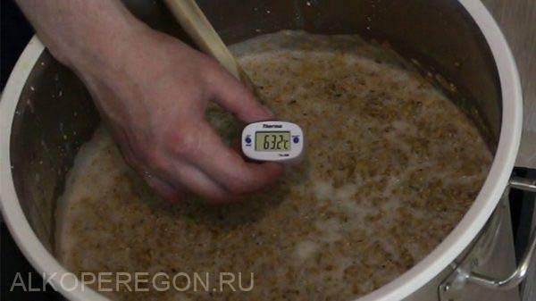 Осахаривание солода: холодный и горячий метод, инструкция