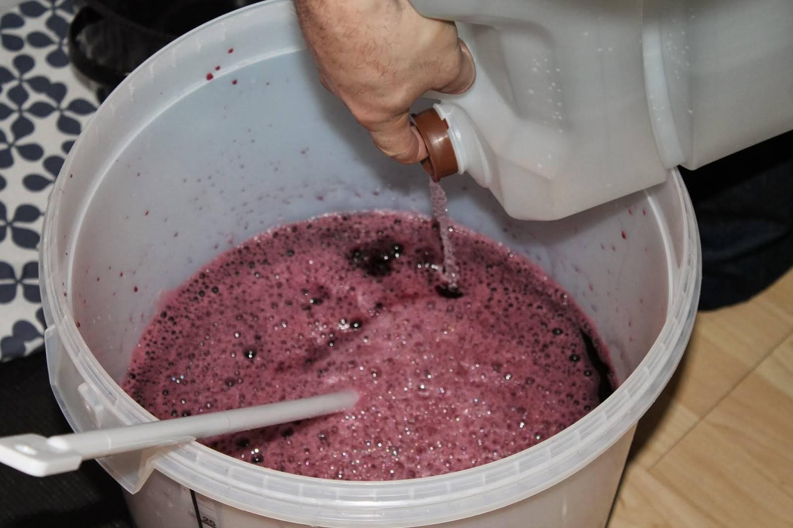 Как выбрать емкость для брожения вина? практические советы
