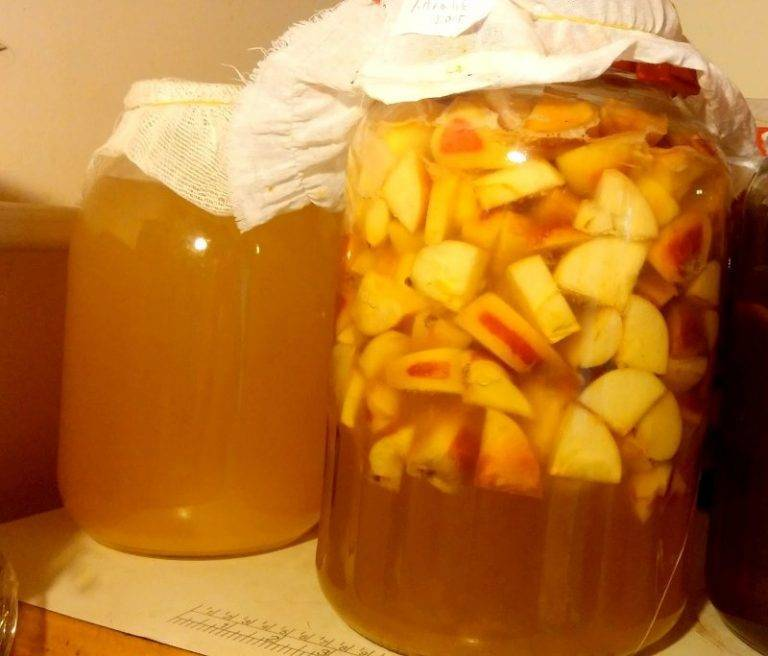 Яблочный уксус: полезные свойства и применение
