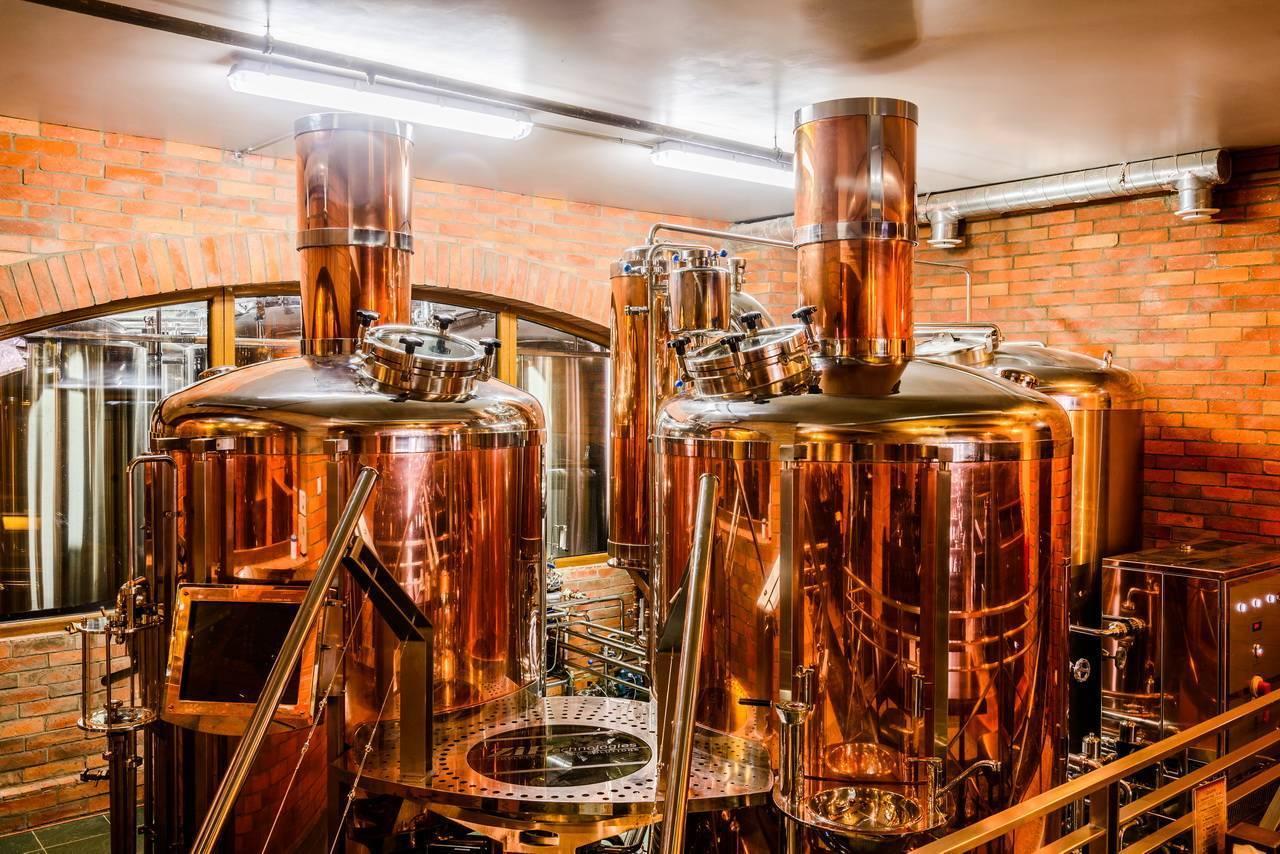 Как выбрать домашнюю пивоварню