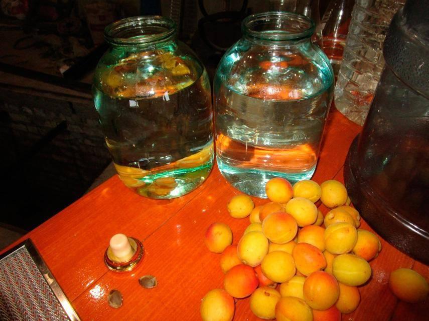 Как приготовить домашний абрикосовый ликер