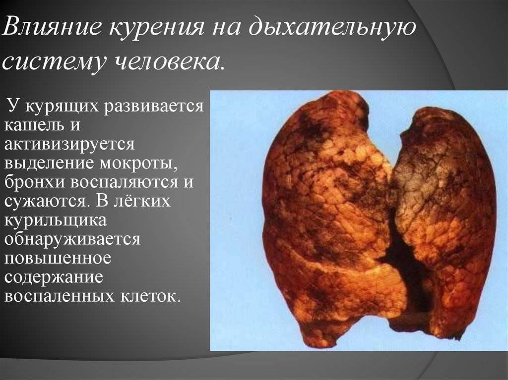 Пагубное влияние курения на организм человека