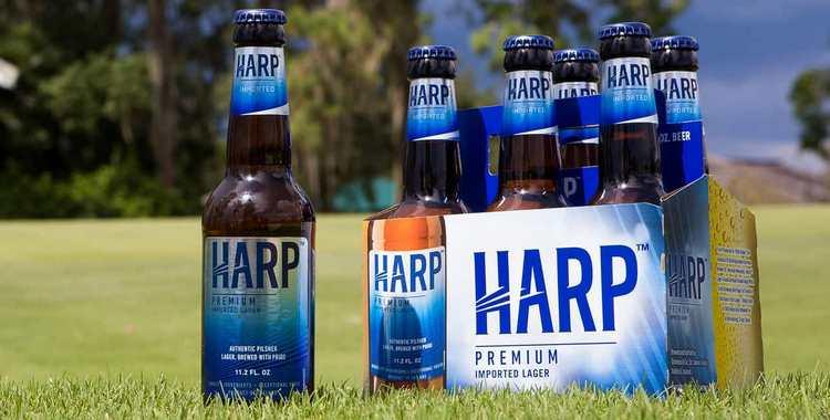 Пиво харп (harp) - особенности, различие вкуса, виды и история