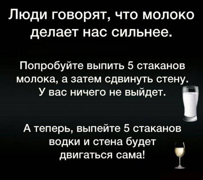 Прикольные фразы про алкоголь - мудрость жизни - медиаплатформа миртесен