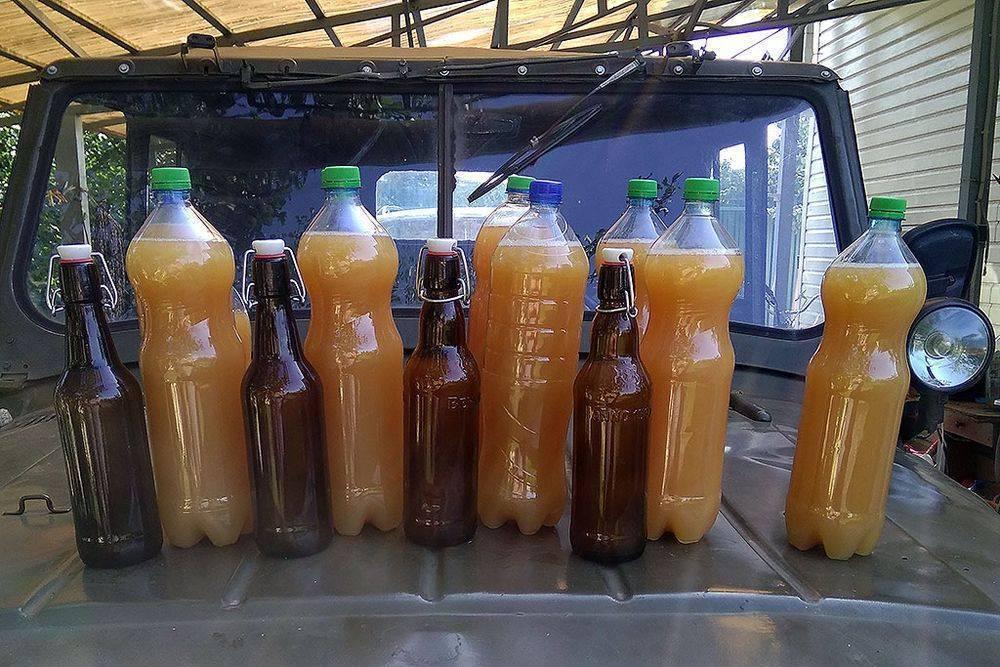 Рецепт браги для питья: нюансы приготовления напитка в домашних условиях