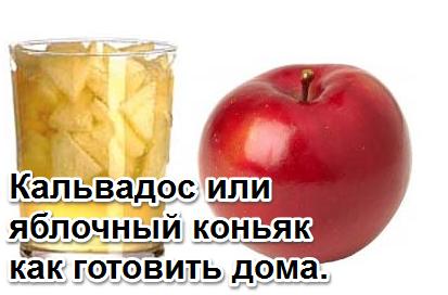 Как сделать настоящий кальвадос или его имитацию — из яблок