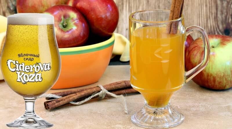 Что такое яблочный сидр, его польза и вред