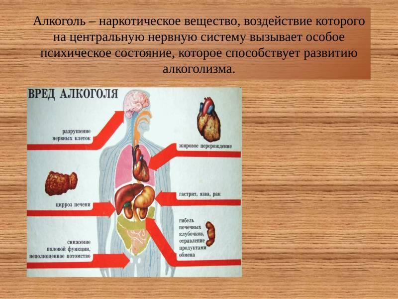 Отравление и интоксикация головного мозга алкоголем отравление.ру отравление и интоксикация головного мозга алкоголем
